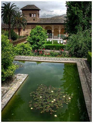 Javi navarro jardines de la alhambra for Jardines alhambra